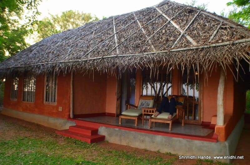 Thatch roof cottage at Evolve Back Kabini, one of the best hotels in India