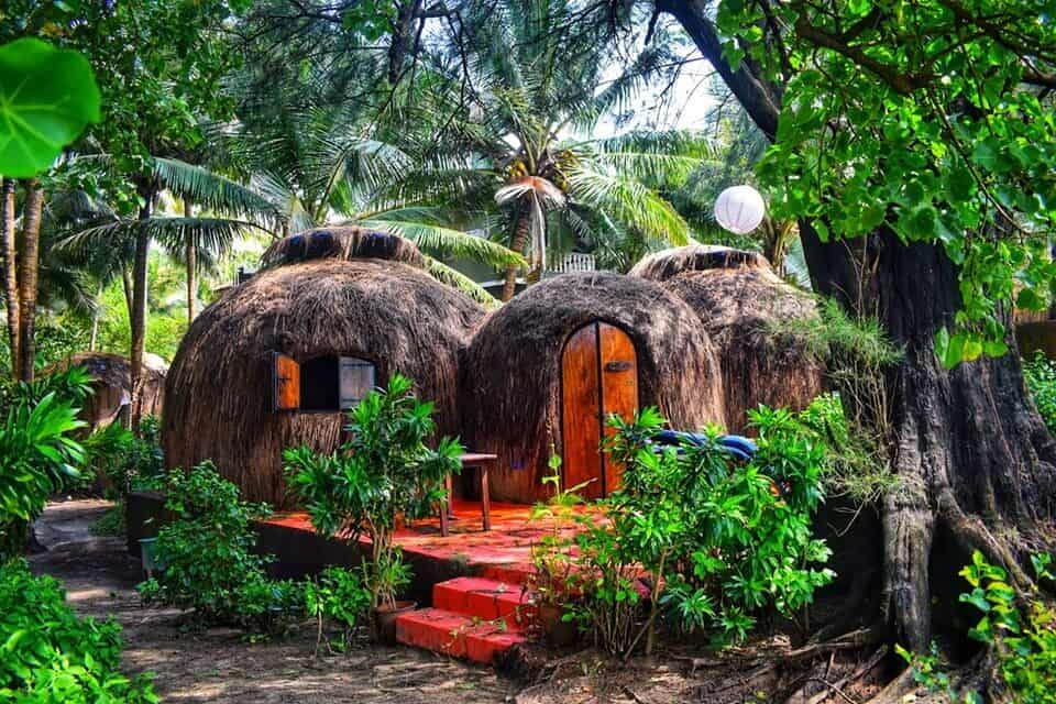 A best hotel in India with thatch covered dome huts