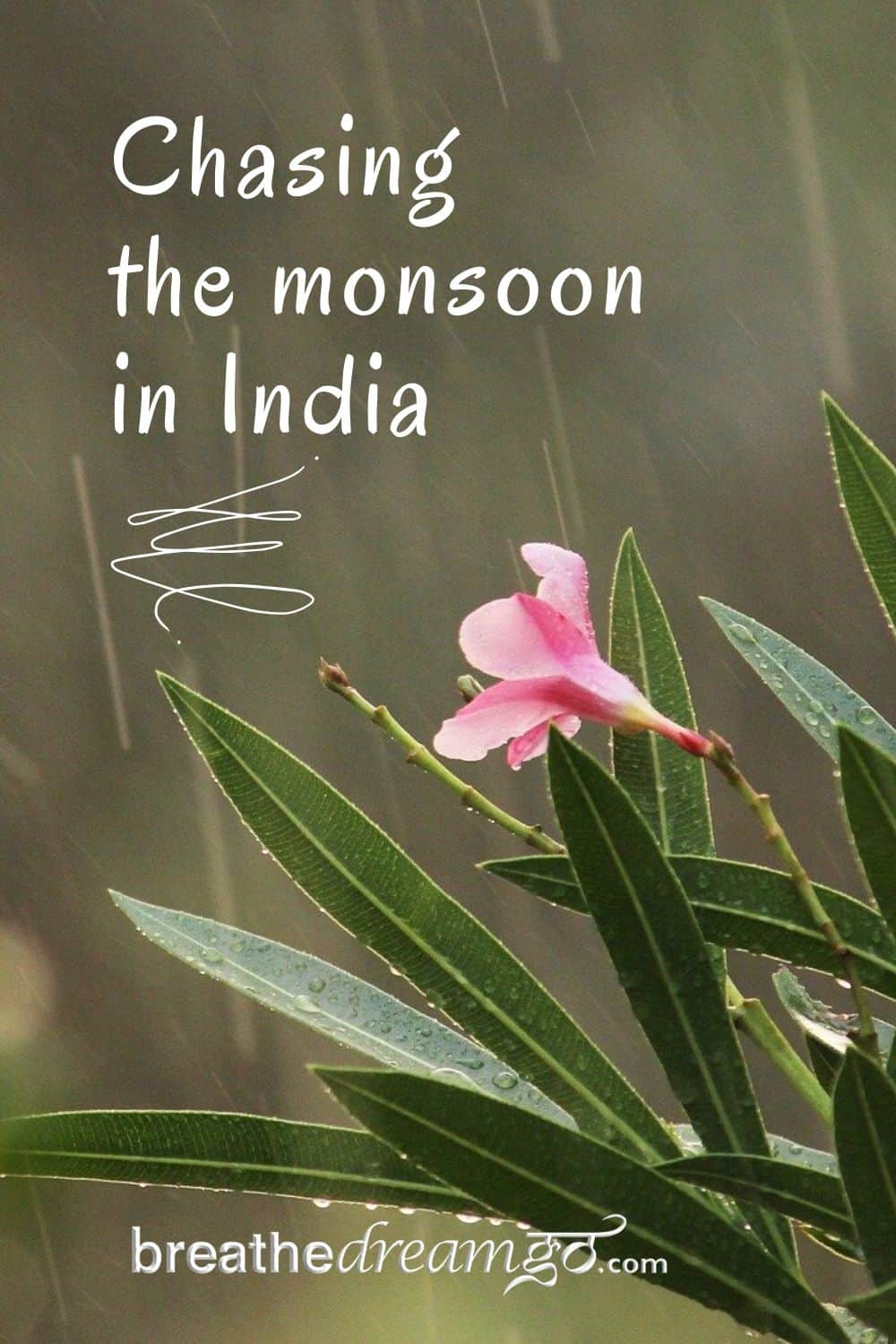 monsoon rain in India