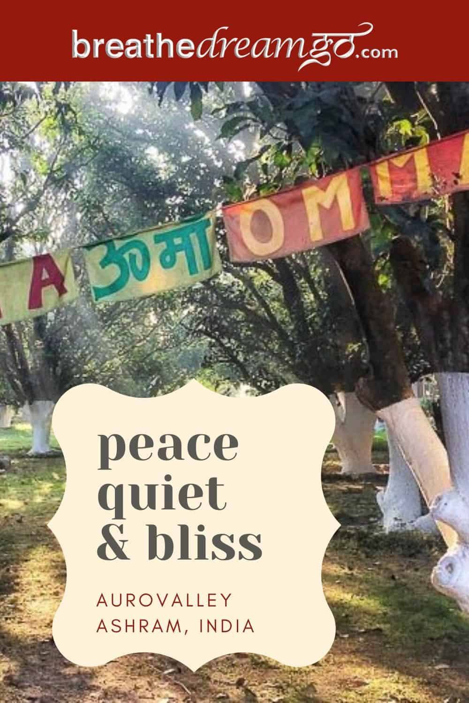 Aurovalley Ashram trees, India
