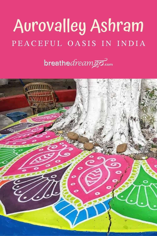 Aurovalley Ashram tree, India