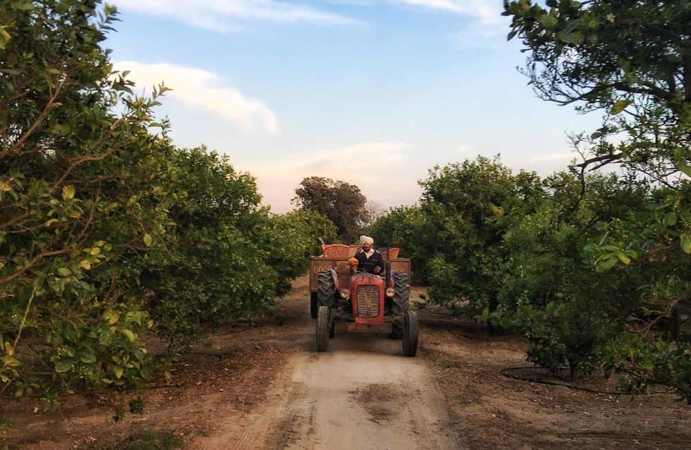 tractor in rural and offbeat Punjab