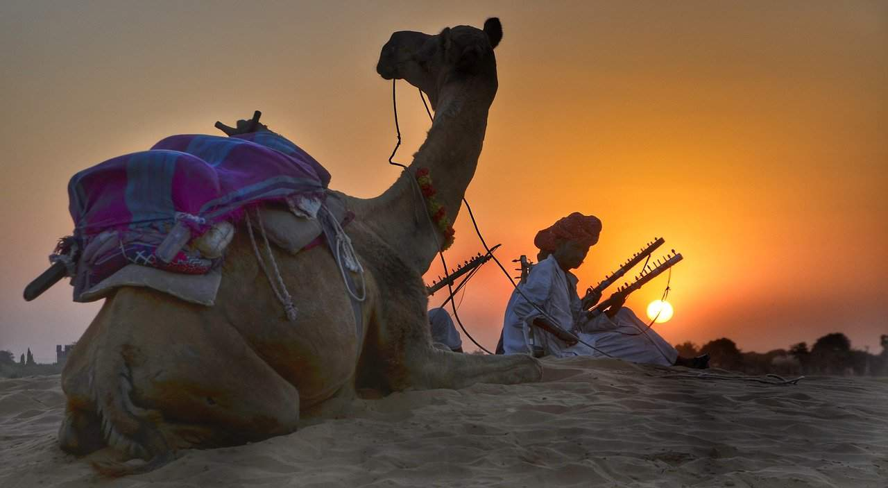 Rajasthan musician with camel in Jaisalmer desert at sunset