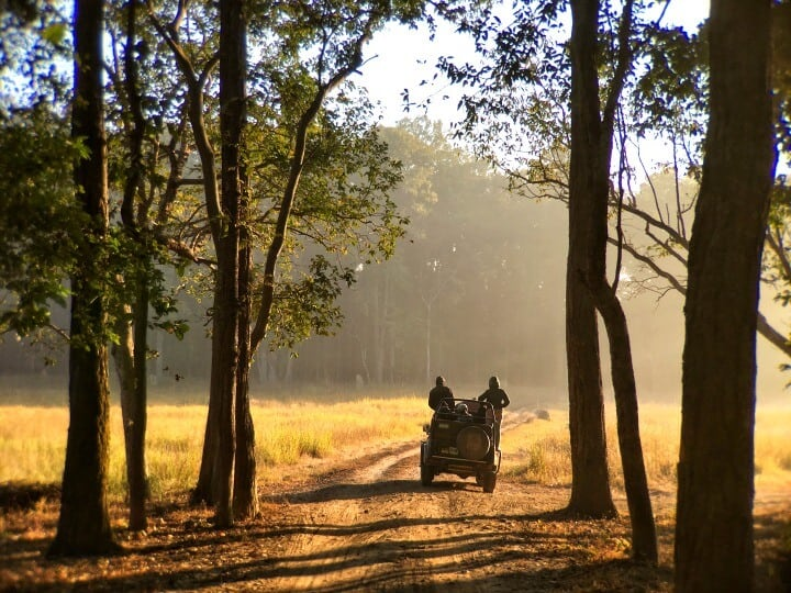 jeep in forest on tiger safari in India