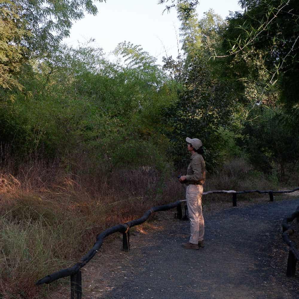 Denwa Backwater Escape path