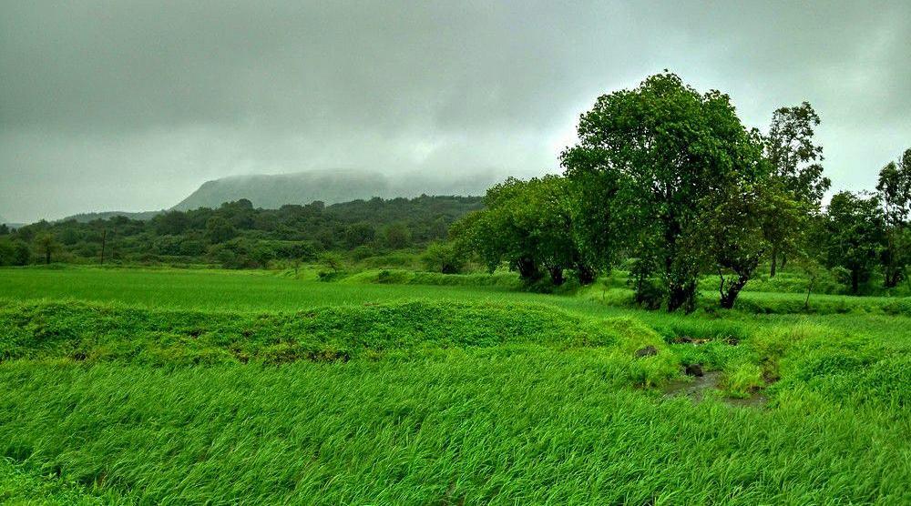 Western Ghats, Maharashtra, India during the monsoon